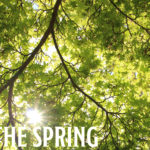 In the spring #02